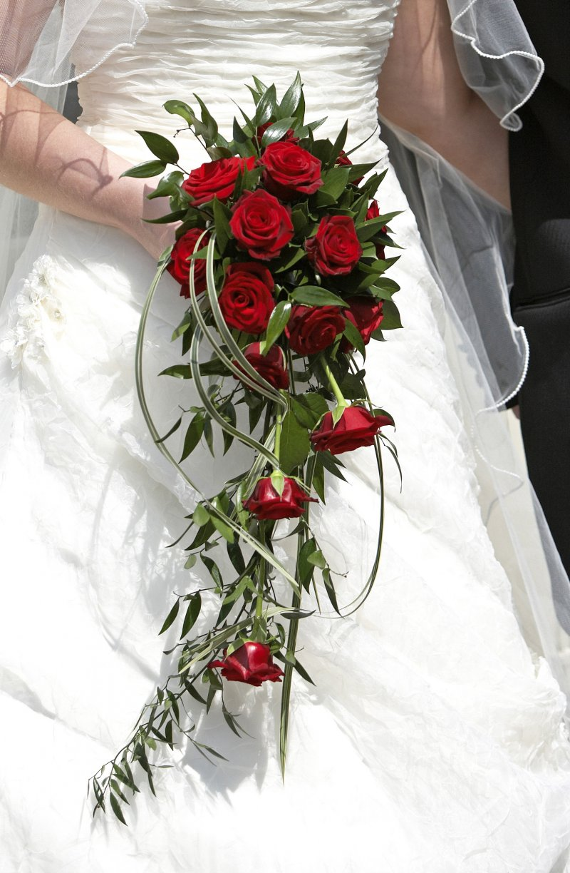 Red Grand Prix with Soft Ruscus trailing foliage